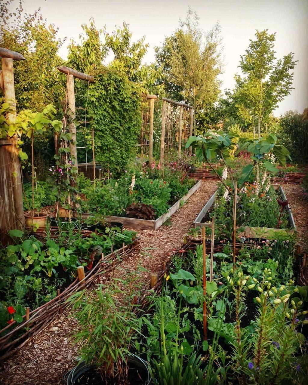 Delightful Landscape Designs Ideas 05